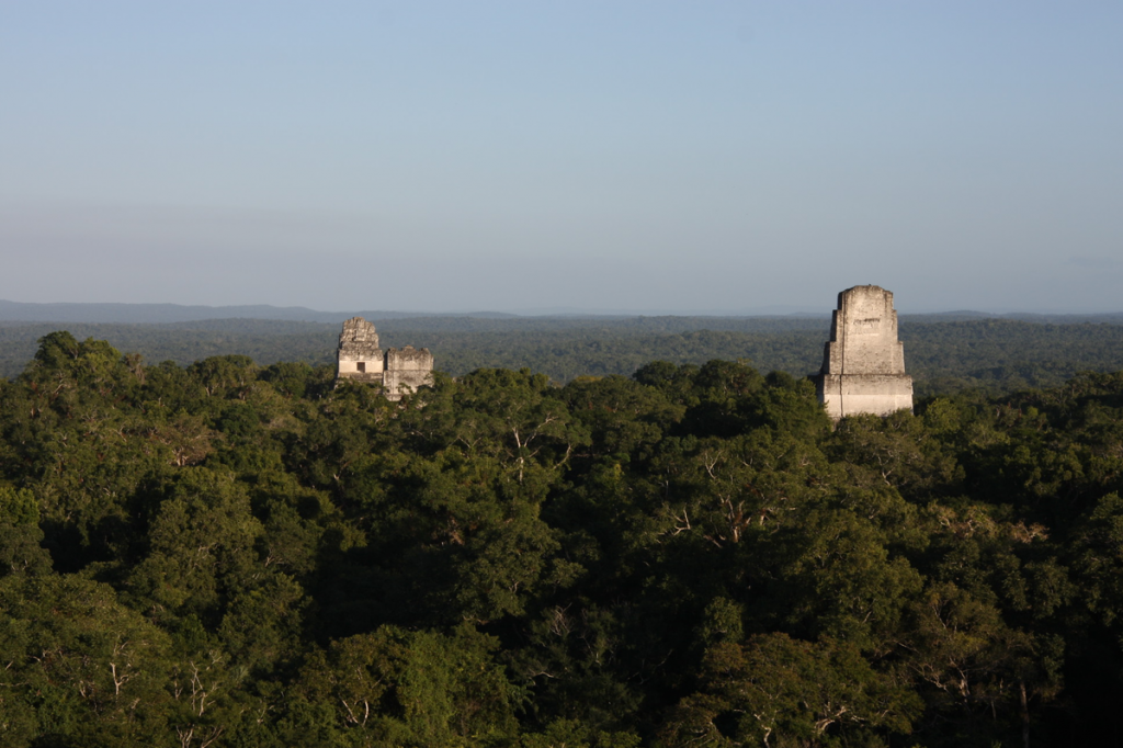 View of ver the jungle on to some of the pyramids